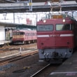 Electric Locomotive#305