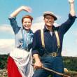映画 静かなる男(1952)アイルランドの誇りを感じさせます