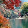 嵐山の紅葉(1) 2017.11.22