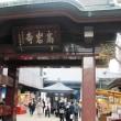赤坂氷川神社、日枝神社、とげぬき地蔵