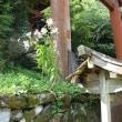 吉野水分神社5