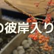 9月20日(水)秋のお彼岸入り、バスの日、お手玉の日、曇ってるよ。(^_^;)