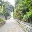 母の財産&結弦羽神社(ゆづるは)