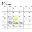 【募集スタート】『cafe & photostudio イロノハ』10月の撮影予約開始