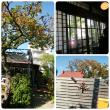 古民家カフェ、もう一軒*