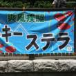 春の東京開催もフィナーレ!