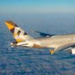 ペルシア湾岸地域の大手航空会社エティハド航空の業績不振!
