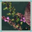 赤紫蘇の花はやっぱり紅い