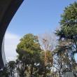 天王寺動物園界隈