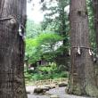 河口浅間(あさま)神社