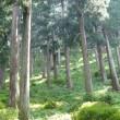 2008~2013年における農林家の再生産過程の変化ー2013年「林業経営統計調査報告」分析ー