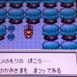 ポケモン金日記 その2 アルフのいせき~コガネシティ