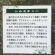 沖縄最後の日 プチ観光