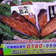 3/3・・・旅サラダプレゼント(本日正午まで)