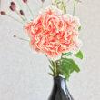 9月16日その2  ザクロの花をいただきました