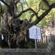 向上寺 三重塔と大山祇神社