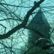 東山植物園の塔