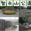 狭山市智光山公園の紹介!