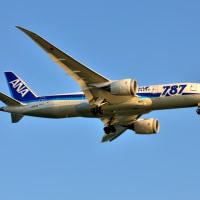【飛行機】B787復活