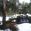 兵庫湯村温泉へ一泊小旅行