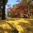 2017.11.17 京都南禅寺と永観堂へ