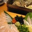 穴子と牡蠣