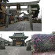 050足利市上渋垂町・赤城神社の庚申塔(最寄り:福居駅)