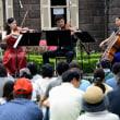 旧古河庭園・春バラの音楽会・・1