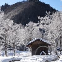 18年2月~冬のベストショツト