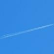 新緑と飛行機雲と昼の月ーー青空三つ
