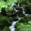 鳥取県一の大飛瀑 雨滝 in 鳥取・鳥取市国府町