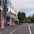 札幌国際芸術祭の会場、北海道大学総合博物館への道