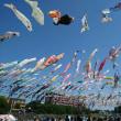 鯉のぼりフェスティバルとVULCANO in 高槻