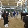 3つの和牛改良推進組合が合同で保留牛育成研修会を開催しました