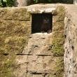 深窓の黒猫