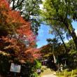 基山の大興善寺からp2(D810、シグマ15mm魚眼)