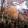 富山の名勝地・映画ロケ地とグルメを楽しむ旅;プロローグ
