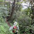 17 三瓶山(東の原→女三瓶・男三瓶山→西の原)縦走登山  草原から樹林地帯へと