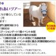 安藤美姫と誘導馬
