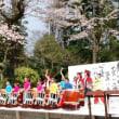平成28年4月9.10日(土)(日)平城跡さくら祭り