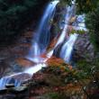 秋を粧う「妹背の滝」