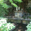 ブログ170521 女史旅 湯河原温泉 ~不動滝