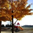 パークゴルフ場・最近の市内の紅葉