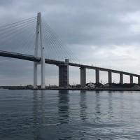 万葉線の旅ー紅ガニ、越ノ潟フェリー、新湊大橋、奈呉の浦
