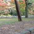 夜宮公園散歩 181201