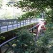 9月29日寸庭林道へ朝の運動を兼ねて行きました