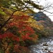 紅葉の日光山を往く