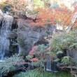 目黒雅叙園の庭園と紅葉
