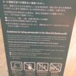 富山市にて    鱒寿司と硝子の美術館