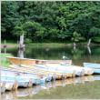 丸沼湖畔を散策